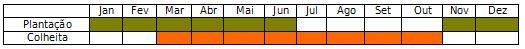 calendário plantação e colheita